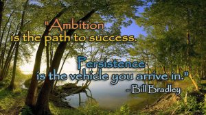 Ambition is the path to success!